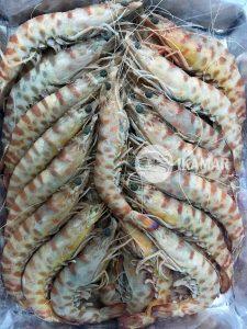 ichbilia productos ikamar congelado a bordo